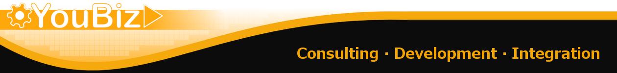 YouBiz Consulting
